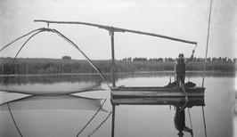 kruisnetvisser in Strierskreek bij Aardenburg (?); kruisnetvisser in de Kreek bi…