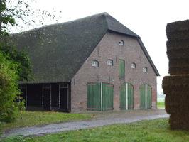 Geertruids Hof; van Tilburgstraat 43; rieten dak