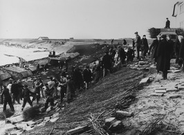 herstel zeewering; rijshout; links de Nolledijk