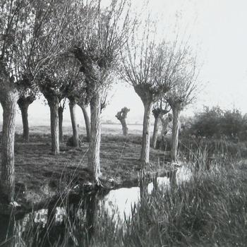 Walcheren, 974