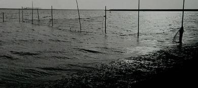 Land en water