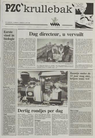 Provinciale Zeeuwse Courant katern Krullenbak (1981-1999) 1995-06-13