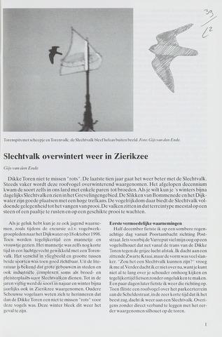 Sterna 1999-04-01