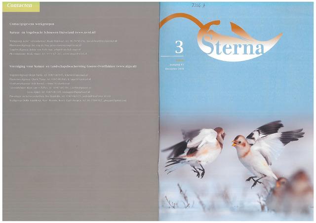 Sterna 2018-12-01
