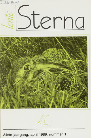 Sterna 1989-04-01