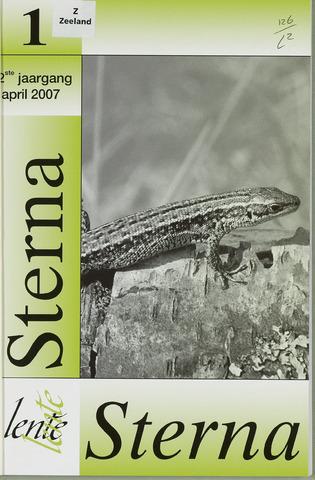 Sterna 2007-04-01