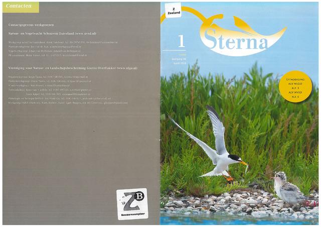 Sterna 2019-03-21