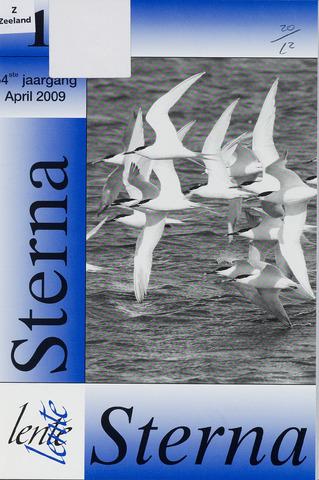 Sterna 2009-04-01