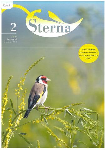 Sterna 2019-06-21