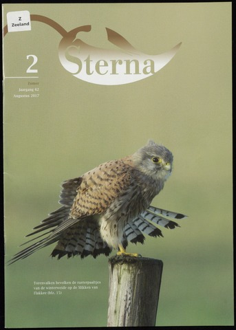 Sterna 2017-08-01