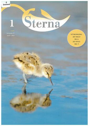Sterna 2020-04-01