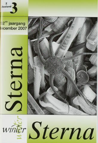 Sterna 2007-12-01