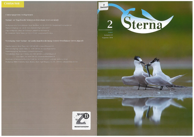 Sterna 2018-08-01