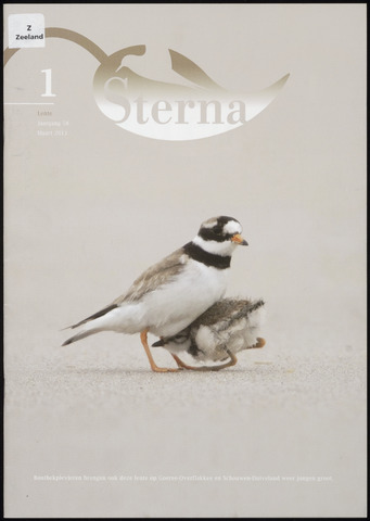 Sterna 2013-03-01
